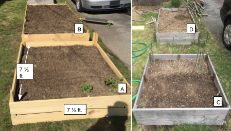 Kiyoshi's family has 4 raised beds. Bed A has dimensions of 7 and 1-half by 7 and 1-half.